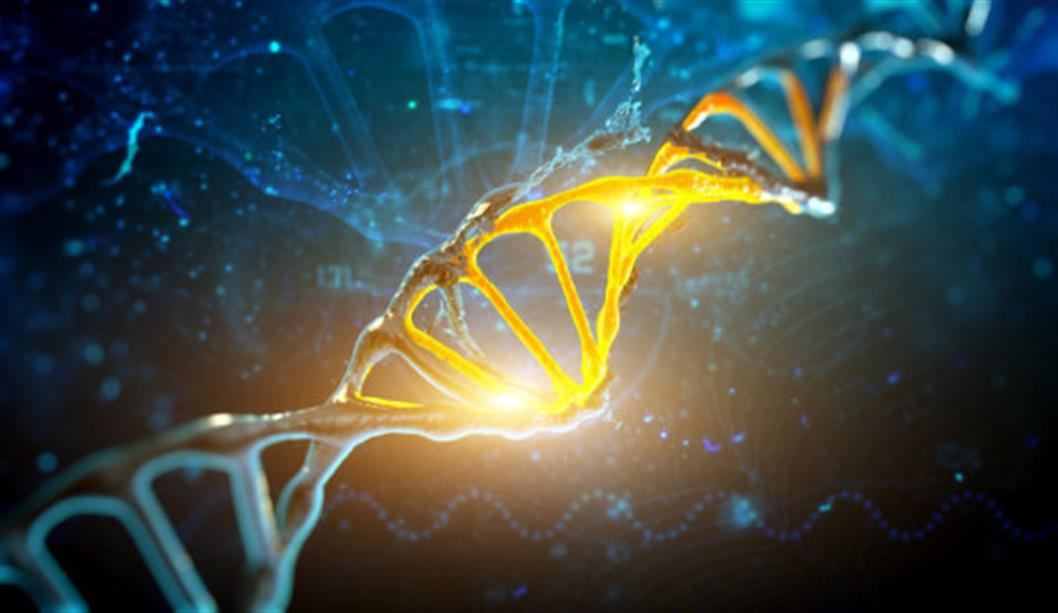 Study's findings challenge understandings of genes as fixed features of our biology